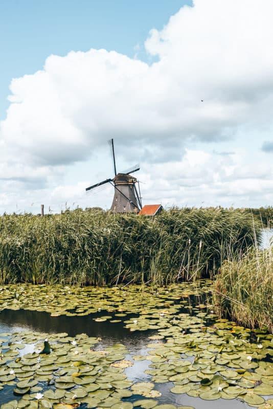 Kinderdijk, leuke uitjes in Nederland