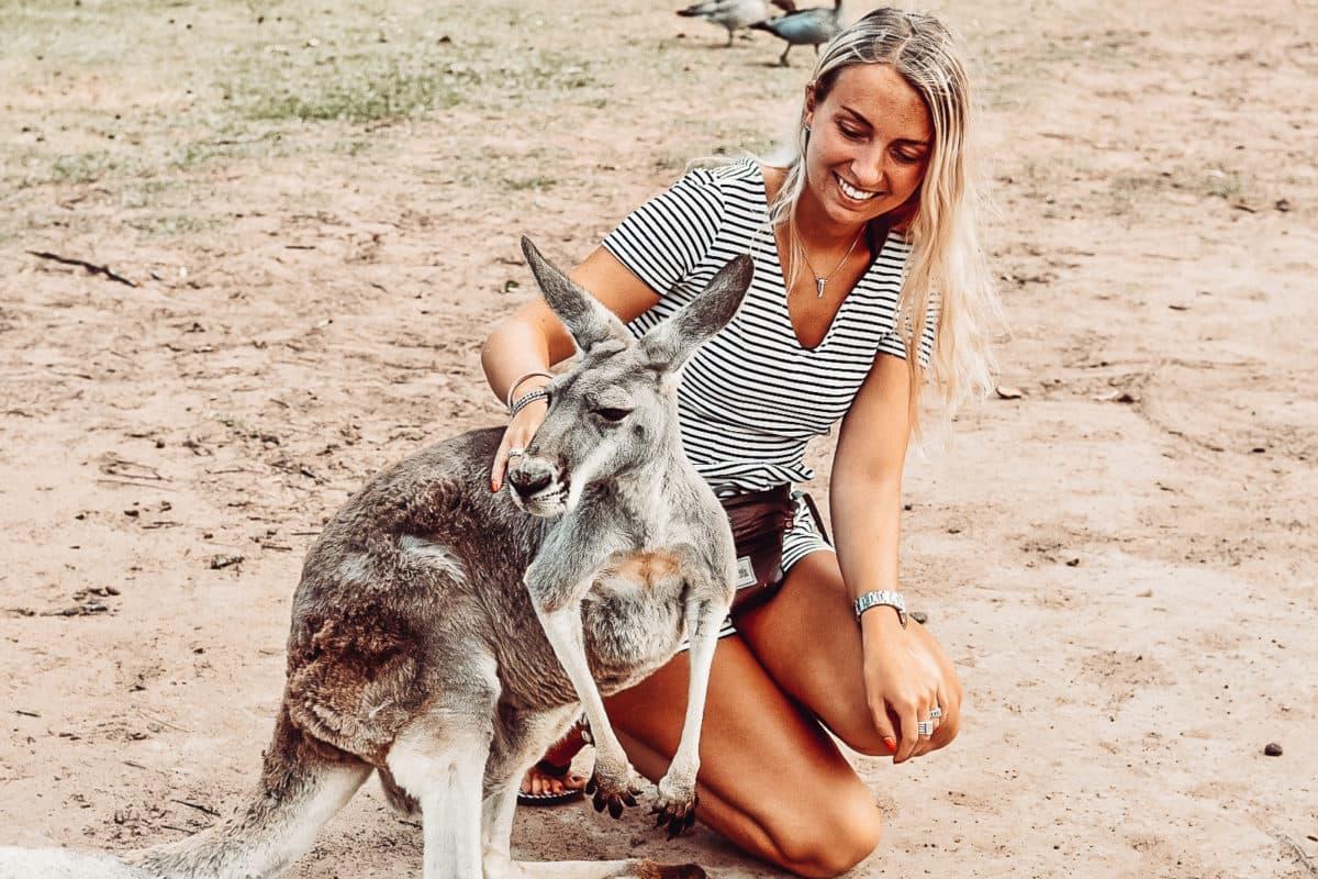 Hippie en surfparadijs: Byron Bay Op weg naar Byron Bay kan je een tussenstop maken bij Lone Pine Koala Sanctuary. In dit park kan je knuffelen met kangaroos en koala's. Wij hebben Byron Bay echt als thuiskomen beschouwd. De sfeer is hier geweldig en er zijn tal van leuke uitstapjes te doen. Het is er gemoedelijk om doorheen te wandelen en een fijne plek om een terrasje te pakken. Byron Bay is de placet to be om eens een surfles te volgens. In Byron Bay zitten veel authentieke winkeltjes. Wij hebben bijvoorbeeld onze eigen armbandjes gemaakt. Vanuit Byron Bay kan je ook gaan kajakken om dolfijnen te spotten of een mooie route afleggen met de auto langs de watervallen of de bekende watertoren.
