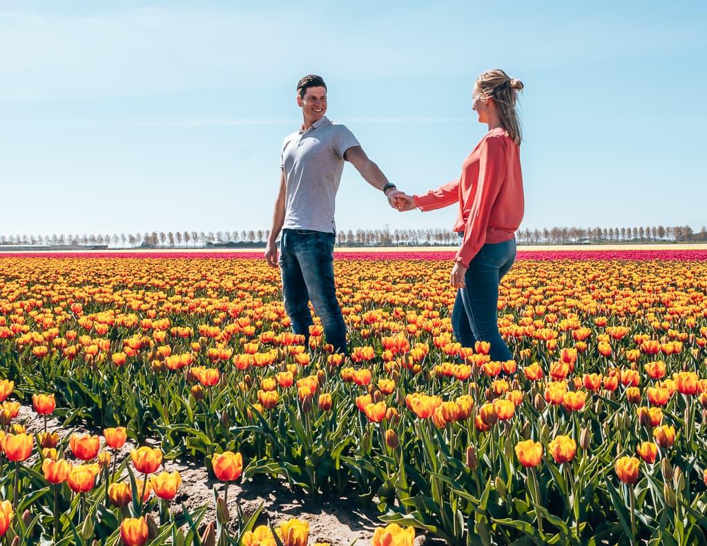 Leukste-uitjes-van-Nederland-coronaproof-dagje-weg-in-Nederland-Tulpenvelden-Goeree Overflakkee