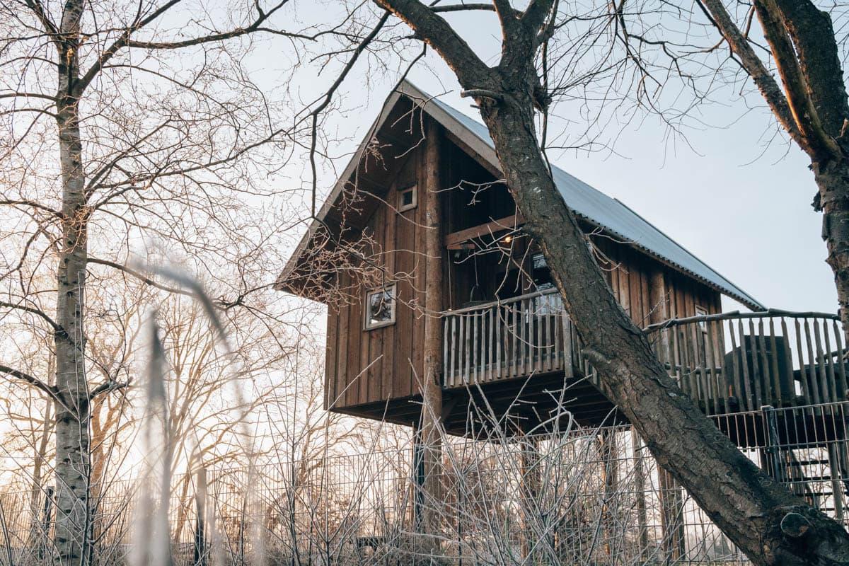 Waar slapen in een boomhut in Nederland