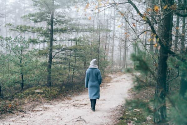 Wandelen op de Sallandse Heuvelrug, tips voor de mooiste wandelingen