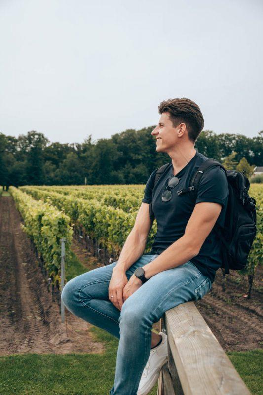 Tips en bezienswaardigheden Achterhoek: Wijngaard Hesselink